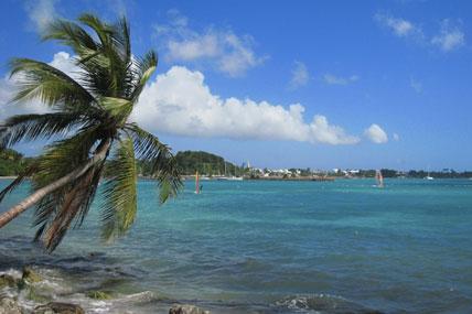 La Guadeloupe à hauteur d'homme